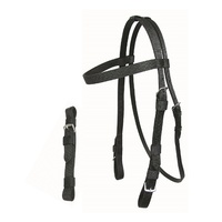 Walsh Pro-Nylon Bridle with Curb
