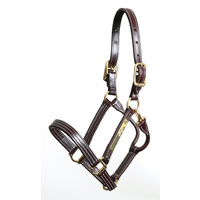 Walsh Leather British Halter