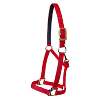Walsh Victory Halter