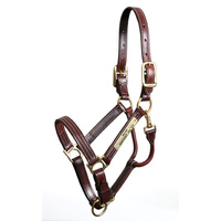 Walsh Leather Kentucky Halter